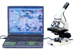 Комплекс для исследования капли крови - гемосканирования