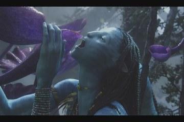 Кадр из фильма Ававтар